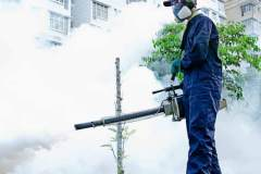 fumigation-extermination-services-cover